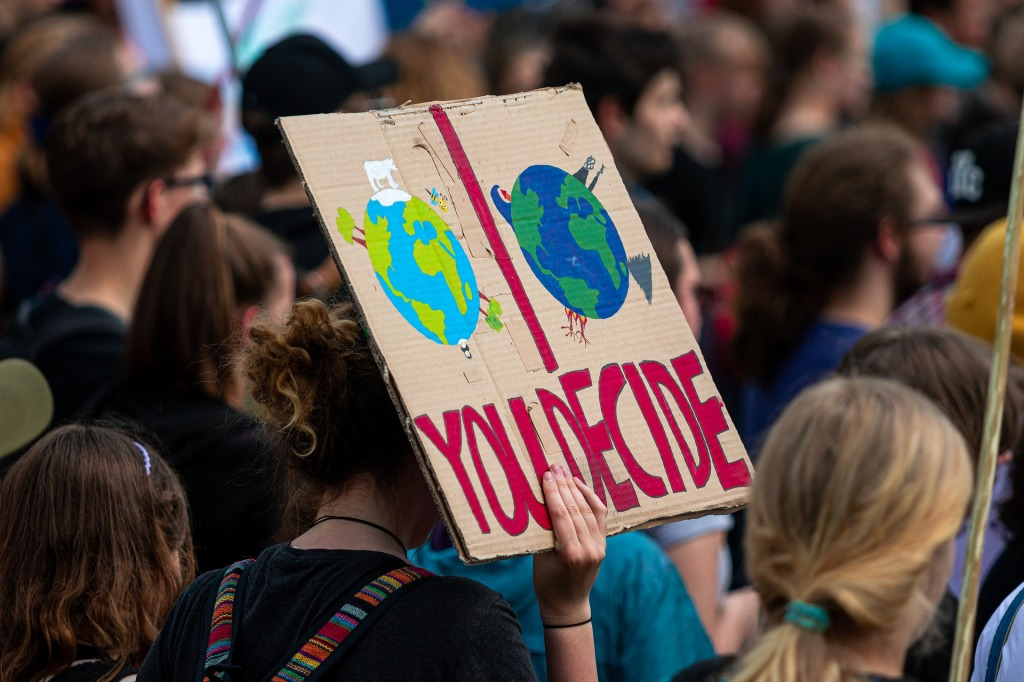 Fridays-for-Future-school-strike